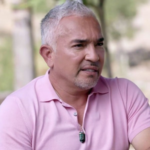 Cesar Millan, Hollywood Medium 408